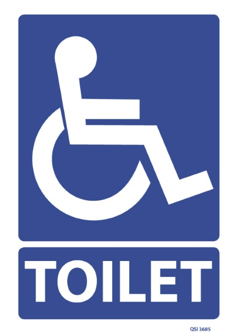 Disabled Persons Toilet 240x240mm